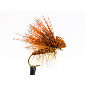 October Caddis Adult, rusty
