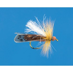 """Moving"" Caddis, brown"
