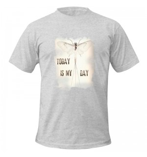 TRAUN RIVER T-Shirt Today is My Day, heather grey