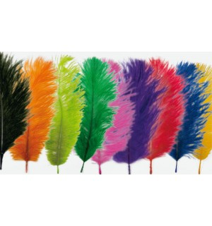 Spey Plumes