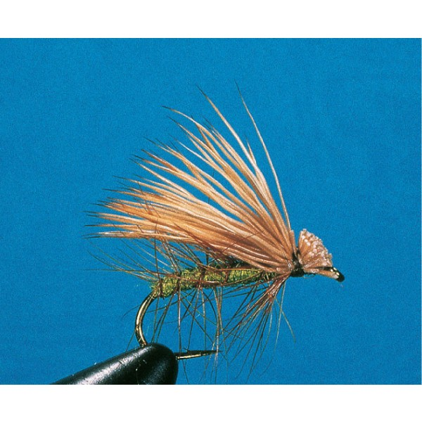 Buck Caddis, olive