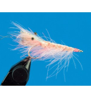 CDC Shrimp, light pink