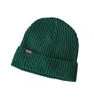 Patagonia Fishermans Rolled Beanie, micro green