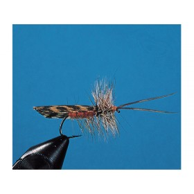 Brown & Grizzly Sedge
