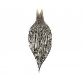 Whiting Capes Silver-Quality