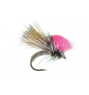 Clown Shoe Caddis, brown