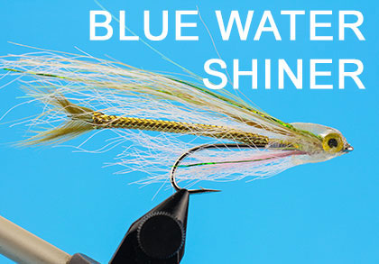 Blue Water Shiner Bindeanleitung
