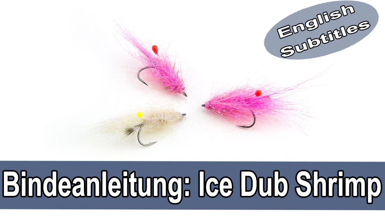 Ice dub Shrimp